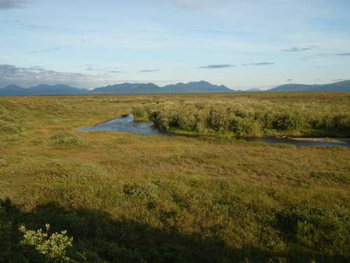 A Togiak Tributary - The Pongo...